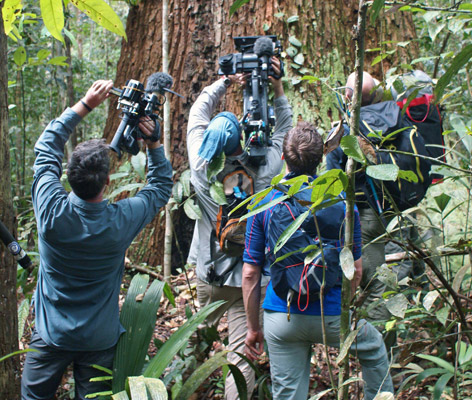 The team filming in the jungle